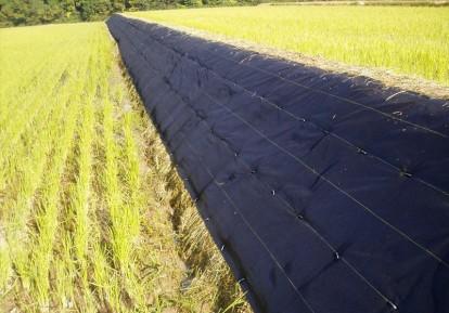 農地まわりの防草シート施工事例 (農地)