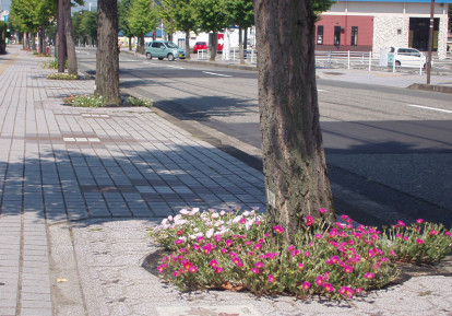 その他の防草シート施工事例(花壇)