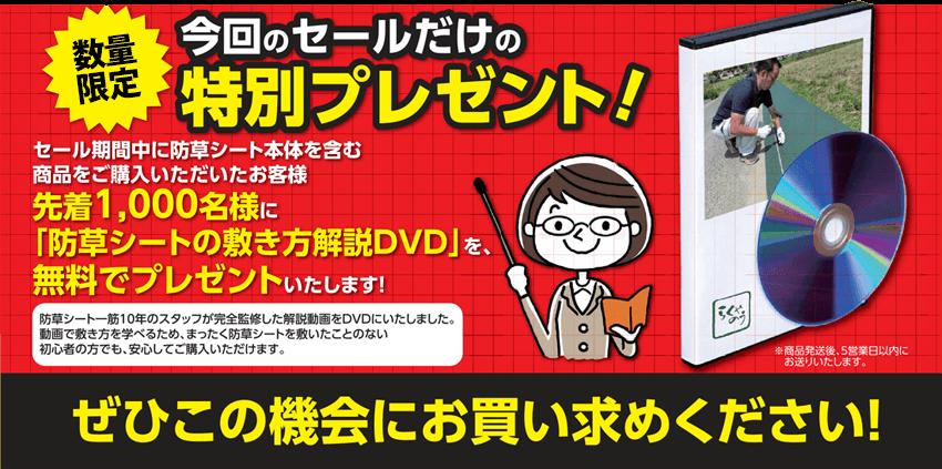 DVDプレゼント企画