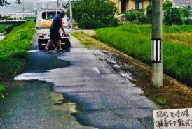 [池田東地域農地・水・環境保全組織 下東野区様]路面洗浄中