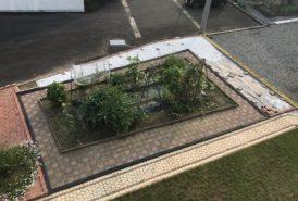[M.K様]雑草対策事例(施工過程②)