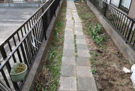 [KOERI様]雑草対策事例_施工前