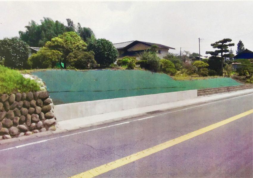 [トラックマン ネコ様]雑草対策事例①全景