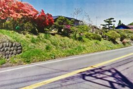 [トラックマン ネコ様]雑草対策事例④草刈り前