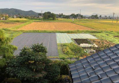 農地の防草シート施工事例(畑)[コンテスト応募作品]