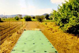 [出畑様]雑草対策事例⑤2回目施工前平板設置