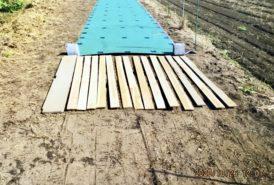 [出畑様]雑草対策事例⑥平板に乗って地面を踏み固める
