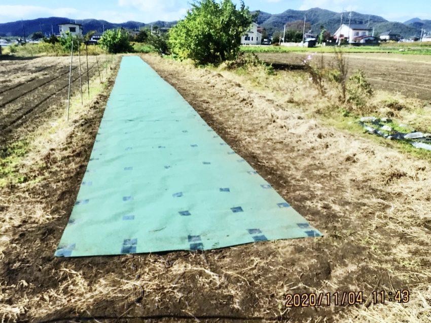 [出畑様]雑草対策事例①