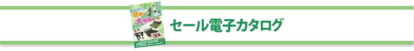 セール電子カタログ2021