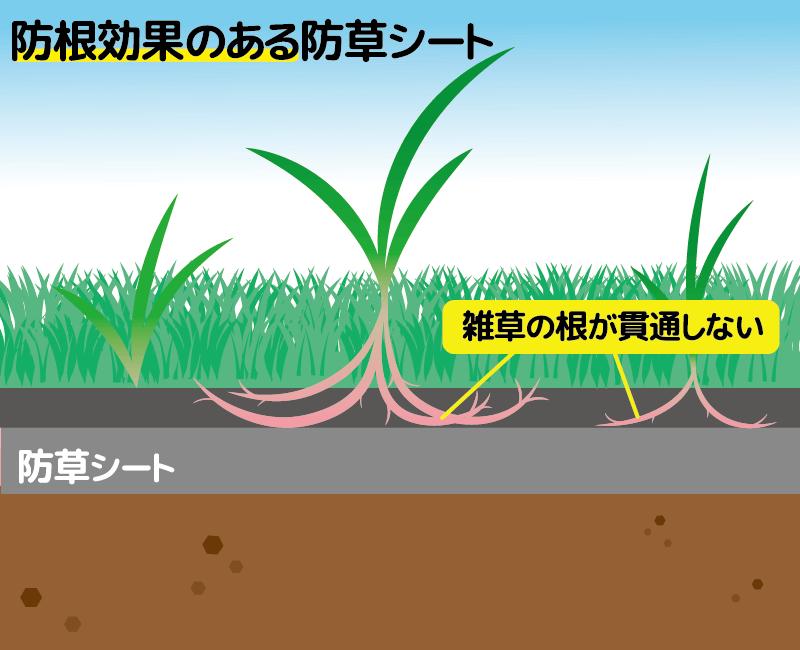 防根効果のある防草シート