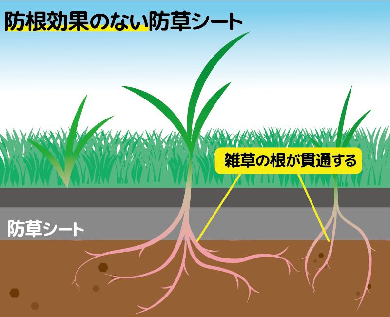 防根効果のない防草シート