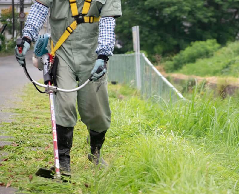 雑草対策 機械刈り
