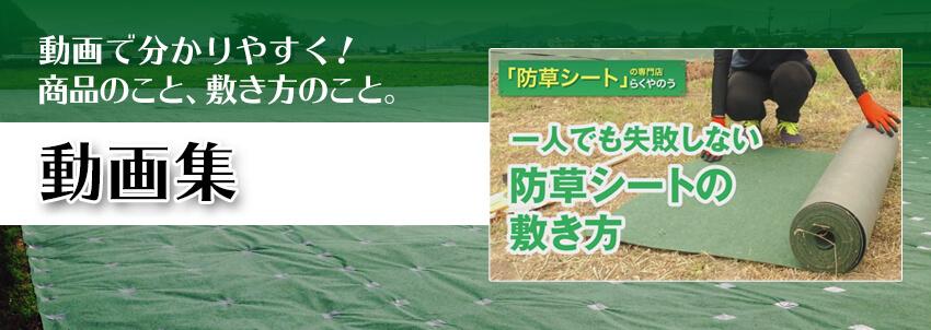らくやのうYouTubeチャンネル
