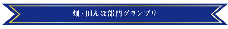 畑・田んぼ部門