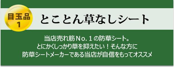 【 目玉品1 】とことん草なしシート