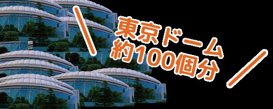 \東京ドーム約100個分/